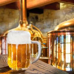 Vynikajúci domáci pivovar